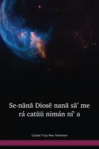 Copala Triqui Language New Testament / Se-nānā Diosē nanā sā' me rá catūū nimán ní' a (TRCNT) / Mexico