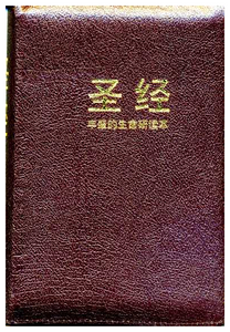 Chinese Fire Bible AKA Full Life Study Bible / Chinese Union Version Text  / CUV / Simplified Chinese Characters  Bonded Leather, Burgundy, Zipper, Gold Lettering on Cover