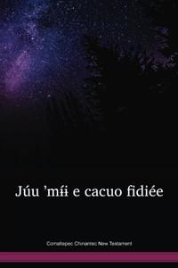 Comaltepec Chinantec New Testament / Júu 'mɨ́ɨ e cacuo fidiée (CCONT) /  Comaltepec Chinantec 2002 Edition / Mexico