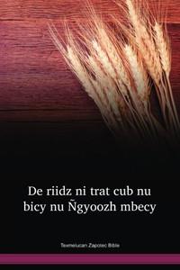 Texmelucan Zapotec Bible / De riidz ni trat cub nu bicy nu Ñgyoozh mbecy: Salmos; Proverbios (ZPZTBL) / Texmelucan Zapotec 2004 Edition / Mexico