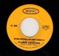 FLAMIN GROOVIES - ROCKIN' PNEUMONIA AND THE BOOGIE WOOGIE FLU