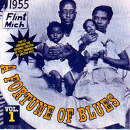 A FORTUNE OF BLUES VOL. 1 (CD)