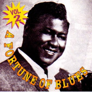 A FORTUNE OF BLUES VOL. 2 (CD)