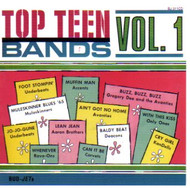 TOP TEEN BANDS VOL. 1 (CD)
