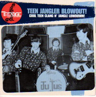 TEENAGE SHUTDOWN VOL. 9: TEEN JANGLER BLOWOUT (CD)