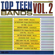 TOP TEEN BANDS VOL. 2 (CD)