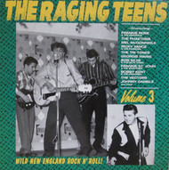 228 THE RAGING TEENS VOL. 3 CD (228)