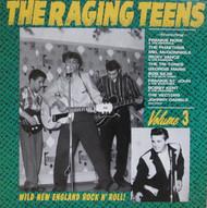 228 THE RAGING TEENS VOL. 3 CD (228)