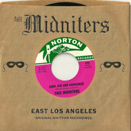 874 THEE MIDNITERS - JUMP, JIVE AND HARMONIZE / THEE MIDNIGHT FEELING (874)