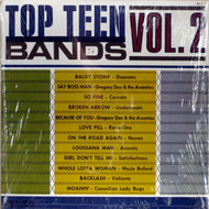 TOP TEEN BANDS VOL. 2