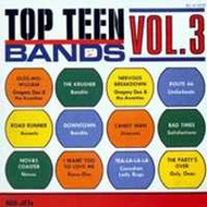 TOP TEEN BANDS VOL. 3