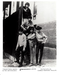 QUESTION MARK AND THE MYSTERIANS PHOTO