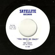 RAY SCOTT - YOU DRIVE ME CRAZY 45RaB-0342-1