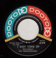 MEADOWLARKS - I GOT TORE UP