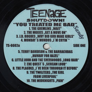 TEENAGE SHUTDOWN VOL. 2 YOU TREATED ME BAD! (SANDY)