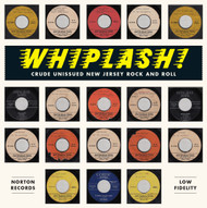 401 WHIPLASH - CRUDE UNISSUED NEW JERSEY ROCK AND ROLL (401)