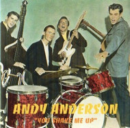 ANDY ANDERSON - YOU SHAKE ME UP (CD)