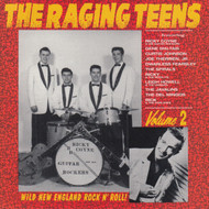 227 THE RAGING TEENS VOL. 2 LP (227)