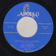 CHESTERS - THE FIRES BURN NO MORE