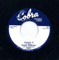 DUKE JENKINS - SHAKE IT