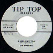 DIE ROBBINS - A GIRL LIKE YOU