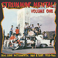 STRUMMIN' MENTAL VOL. 1