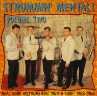 STRUMMIN' MENTAL VOL. 2