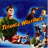 TEENAGE WOLFPACK (CD)