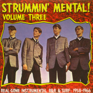 STRUMMIN' MENTAL VOL. 3