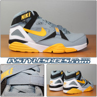 Air Trainer Max 91 Stone Grey 309748-005