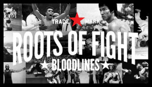 roots-of-fight-s.jpg