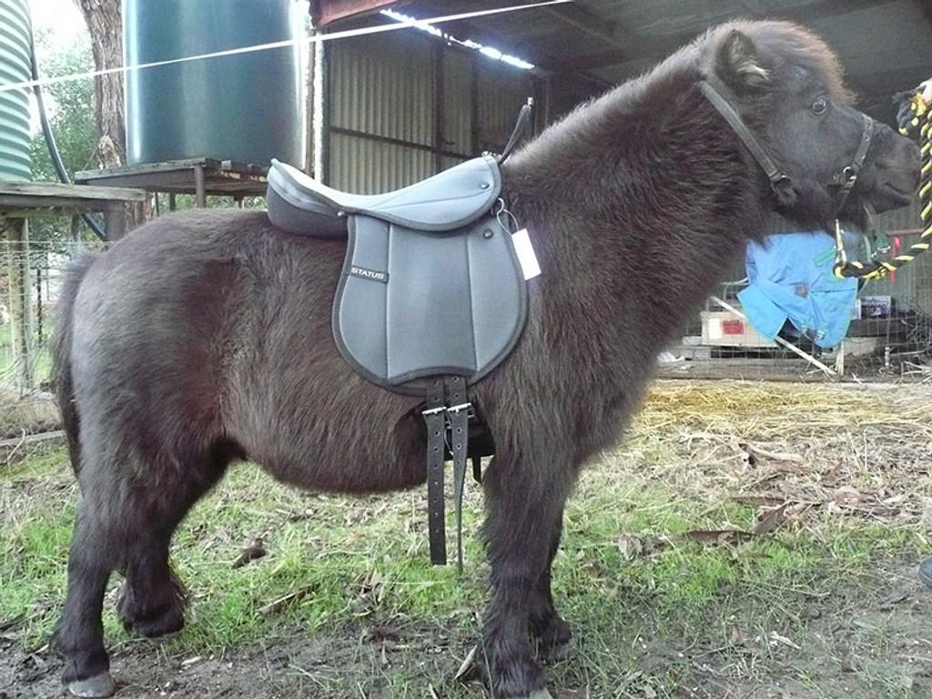 Status Pony Pad with Monkey Grip