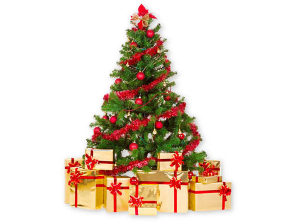 PRE-CHRISTMAS DELIVERY - IMPORTANT INFORMATION