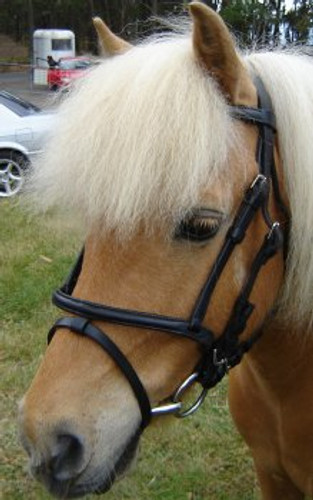 Miniature Leather Bridle