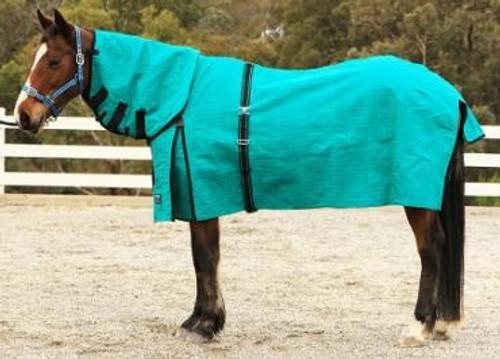 Eureka Canvas Ripstop Winter Horse Combo Rug
