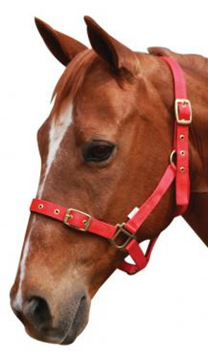 Showcraft Nylon Halter