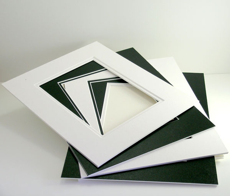 11x14 Double 25 Pack (Conservation)