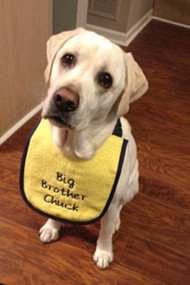 Puppy size yellow drool bib