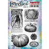 PaperArtsy Cling Mounted Stamp Set - Eclectica³ - Scrapcosy - ESC02