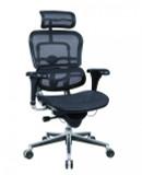 Executive Mesh Back Chair