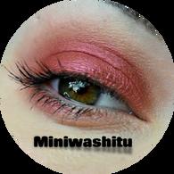 Miniwashitu