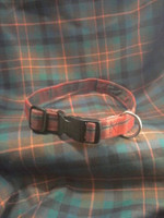 Tartan Collar - Medium