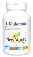 New Roots L-Glutamine Powder 100% pure, 250 g | NutriFarm.ca