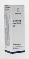 Weleda Cineraria Maritima D3 Eyedrops, 10 ml | NutriFarm.ca