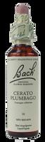 Bach Cerato, 20 ml | NutriFarm.ca