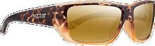 Nectar - Brig Polarized Brown Tortoise/gold