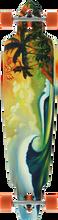 Eversesh - Koniakowski Tropical Fire Comp - 10x43 - Complete Skateboard