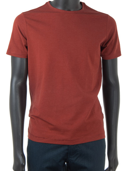Rusty Red Cotton Blend T-Shirt
