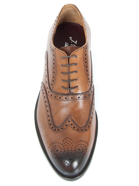 Dark Tan Napoli Brogue