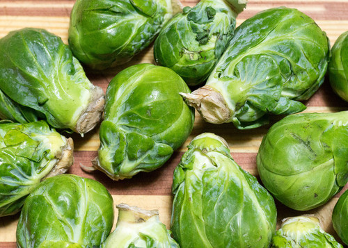 Long Island Brussel Sprout Seeds Qty. 100